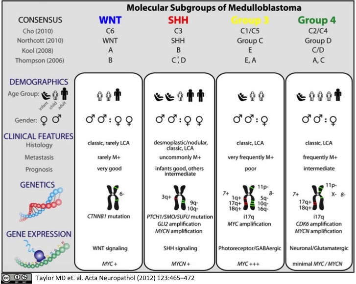 Molecular Subgroups of Medulloblastoma